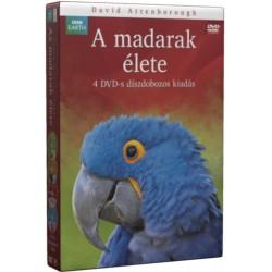 DVD A madarak élete (4 lemezes gyűjtemény)