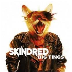 CD Skindred: Big Tings (Limited Digipak)