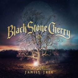 LP Black Stone Cherry: Family Tree (2LP 180 gram)