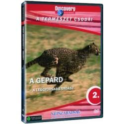 DVD A gepárd - A leggyorsabb vadász