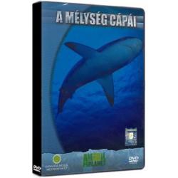 DVD A mélység cápái