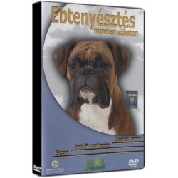 DVD Ebtenyésztés minden szinten - Boston terrier, Jack Russel terrier, Boxer