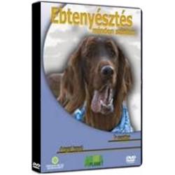 DVD Ebtenyésztés minden szinten - Ír szetter, Angol kopó
