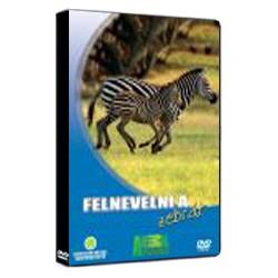 DVD Felnevelni a zebrát