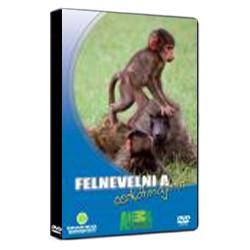 DVD Felnevelni a cerkófmajmot