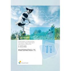 Matematika 11. osztályosok számára