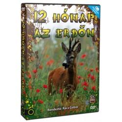 DVD 12 hónap az erdőn