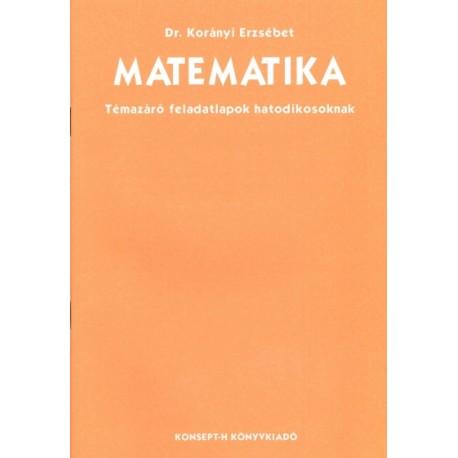 Matematika témazáró feladatlapok 6.