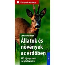 Állatok és növények az erdőben