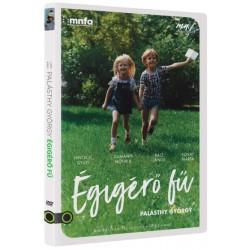 DVD Égigérő fű