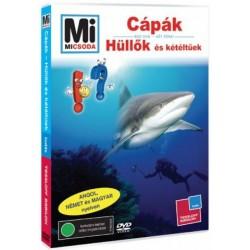 DVD Cápák - Hüllők és kétéltűek