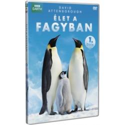 DVD Élet a fagyban 1. rész