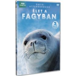 DVD Élet a fagyban 2. rész