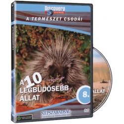DVD A 10 legbüdösebb állat