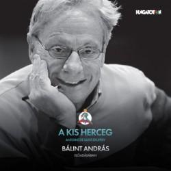 CD A kis herceg hangoskönyv - Bálint András előadásában