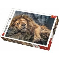 Alvó oroszlán puzzle 1000 darabos
