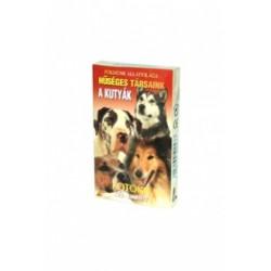 Kvíz-Kvartett: A kutyák