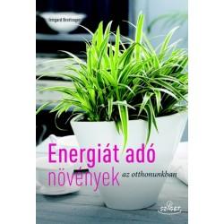 Energiát adó növények az otthonunkban